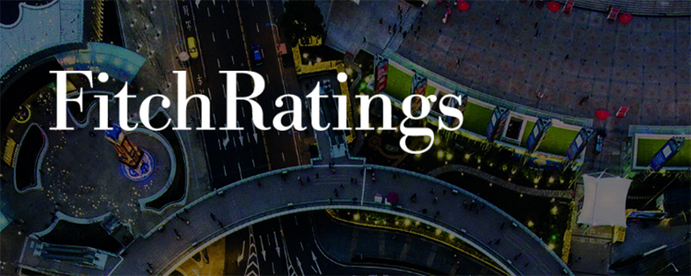 Fitch Ratings Webinar